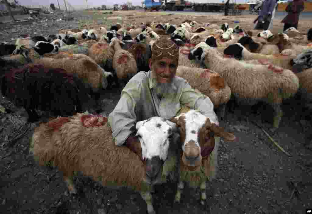 Pakistan - Kəraçidə Qurban Bayramına hazırlıq