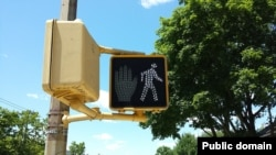 """Are you careful to check if the sign says """"walk"""" or """"don't walk"""" before you cross a busy street?"""