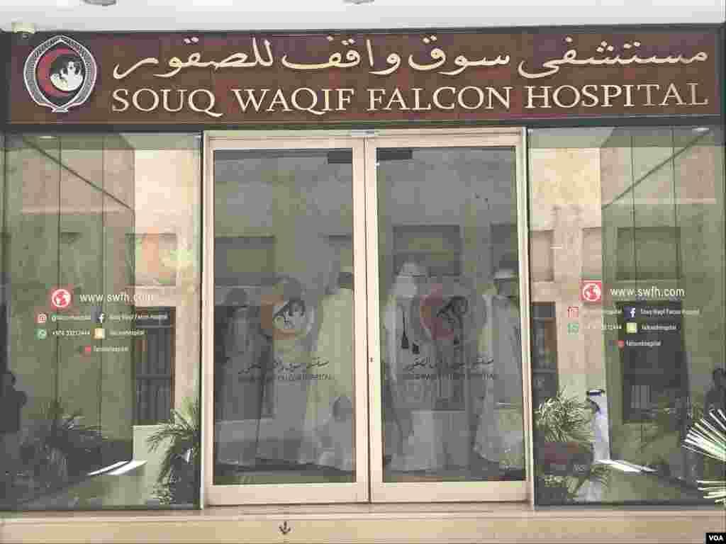 دوحہ کے بازار سوق واقف ميں بازوں کے علاج کے لیے اسپتال قائم ہے يہاں ماہر معالج موجود ہوتے ہیں اسی لیے لوگ باز کا علاج کرانے کے لیے اسی اسپتال کے ڈاکٹرز سے رجوع کرتے ہیں۔