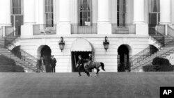 Донька президента Кеннеді Керолайн катається на своєму поні Макароні на галявині Білого дому, На цій фотографії від 20 березня 1962 року