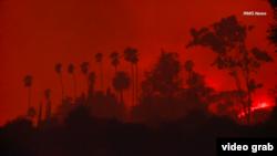 Лісова пожежа у Південній Каліфорнії