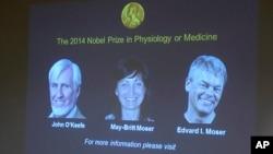 英國神經學家約翰‧奧基夫和另外兩名挪威神經學家愛德華‧莫索爾及妻子梅‧莫索爾因﹐在大腦定位細胞領域的杰出貢獻而共同獲得2014年諾貝爾醫學獎。