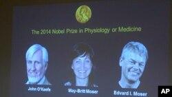 Pemenang Hadiah Nobel Bidang Kedokteran (dari kiri) ilmuwan Inggris-AS John O'Keefe, suami-istri ilmuwan Norwegia Edvard Moser dan May-Britt Moser ditampilkan pada layar presentasi pengumuman Majelis Nobel di Institut Karolinska, Stockholm, Swedia (6/10).