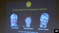 John O'Keefe (à g.), May-Britt Moser et son époux Edvard Moser, les lauréats du Nobel de médecine 2014 (AP)
