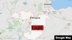 Gujii, Oromiyaa