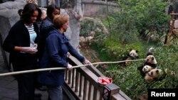 La Primera Dama, Michelle Obama, también visitó la reserva de osos panda en Chengdu, en su viaje a China durante el pasado mes de marzo.
