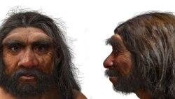 """考古學家發現現代人還有一個同宗分支--""""龍人"""""""