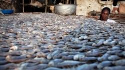 Bientôt un musée consacré à l'histoire culinaire du Bénin