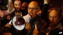 Le Prix Nobel de la Paix Mohamed ElBaradei s'adressant à la foule, au Caire