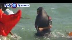 VOA60 Africa - December 23, 2013