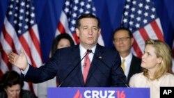 Ted Kruz, Texas Senatoru
