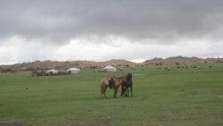 帮蒙古抵御中国影响 俄推动对华新油气管道