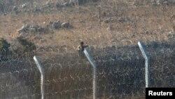 یک شورشی مسلح در جنگ با ارتش سوریه در نزدیکی بلندی های جولان - مرز سوریه با اسرائیل، ۱۰ شهریور