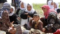 Yazidiylar dunyo madadiga muhtoj - Navbahor Imamova