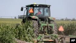 位於内布拉斯加州的玉米農場。