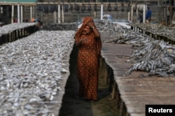 FILE - A Rohingya refugee woman walks through Nazirartek fish drying yard where she works, in Cox's Bazar, Bangladesh, March 23, 2018.