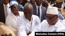 Mali, Burkina ani Codiwoire Jamana fanga nyemaw ka, nyongonye Sikasso