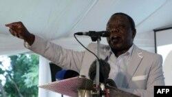 津巴布韦总理茨万吉拉伊2月13日在哈拉雷的公民社团代表会议上讲话