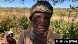FILE: Seventy three year old Helen Katandika of Arcturus mining-farming area.