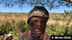 Ugogo Lima emaphandleni eActurus, duze le Harare.