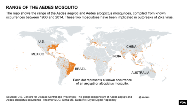 Range of the Aedes mosquito