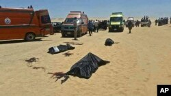 This image released by the Minya governorate media office shows bodies of victims killed when gunmen stormed a bus in Minya, Egypt, May 26, 2017.