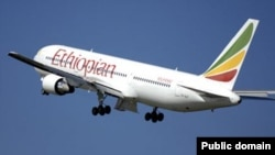 FILE - An Ethiopian Airlines plane in flight.