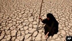 Tình trạng khô hạn trên khắp vùng Trung Ðông, cộng với ảnh hưởng của chiến tranh, gây nhiều khó khăn cho lãnh vực nông nghiệp