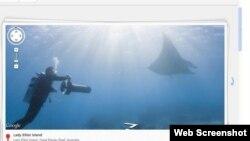 Foto panorama bawah laut yang ada di maps.google.com/ocean.