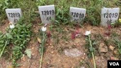 葬在沙嶺公墓無人認領的屍體,墓碑上沒有名字,只有下葬的年份及一個號碼。(美國之音湯惠芸)