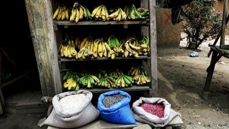 """Afrique/banane: l'appui de l'UE """"ne sera pas reconduit"""" après 2019"""