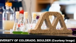Microbes that lay down minerals can create concrete like building materials.