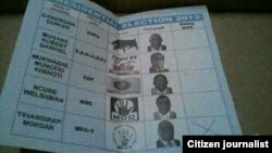 A copy of a marked ballot paper provided by a Zimbabwean on the day of the general election
