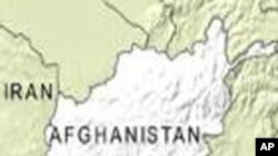 افغانستان عام معافی کا قانون منسوخ کرے : حقوق کی تنظیم