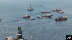 Vessels operate at the site of the Deepwater Horizon oil spill in the Gulf of Mexico (file photo)
