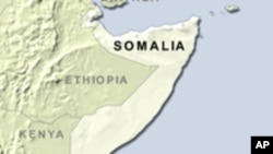 Eyewitness: Somali Pirates Tried to Seize Plane, Passengers