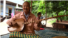 Retired Musician Still Has Songs To Share