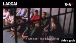"""勞改博物館""""網開""""全球斑斑血淚史警醒世人。(視頻截圖)"""