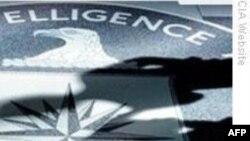 Tay đánh bom căn cứ CIA ở Afghanistan là 'gián điệp hai mang'