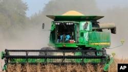 美國內布拉斯加州的農民收割大豆資料照。