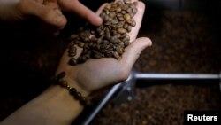 Sandra Dias memeriksa biji kopi yang dipanggang di Redeye Coffee Roasters di Hull, Massachusetts, 2 Mei 2017.