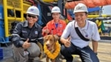 Oil rig workers take a picture with Boonrod, the dog they rescued at sea. (Photo courtesy Vitisak Palayaw via Facebook)