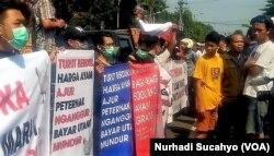 Warga membaca poster yang dibawa peternak ayam terkait anjloknya harga, di Yogyakarta, Rabu, 26 Juni 2019. (Foto: Nurhadi Sucahyo/VOA)