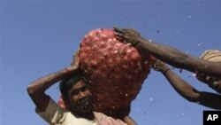 An Indian worker carries a sack of onions at a wholesale market in Hyderabad, India, Jan 22, 2011