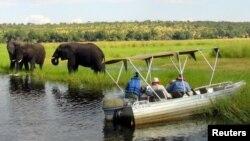 Turis mengamati gajah-gajah di tepi sungai Chobe dekat perbatasan Botswana dengan Zambia (foto: dok). Populasi gajah di Zambia lebih baik dari perkiraan semula.