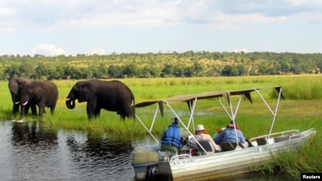 Foreign tourists in safari riverboats observe elephants along the Chobe river bank near Botswana's northern border where Zimbabwe, Zambia and Namibia. (File Photo)