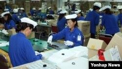 개성공단 재가동 첫날인 16일 개성공단 내 태성하타 공장에서 북한 근로자들이 제품 공정에 열중하고 있다.