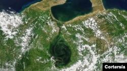 Imagen satelital del Lago de Maracaibo, en septiembre 2021. [Foto: cortesía de la NASA].