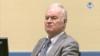 У Гаазі розпочинаються заключні аргументи в справі Ратка Младича