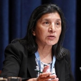UN Special Rapporteur for Violence Against Women, Rashida Manjoo